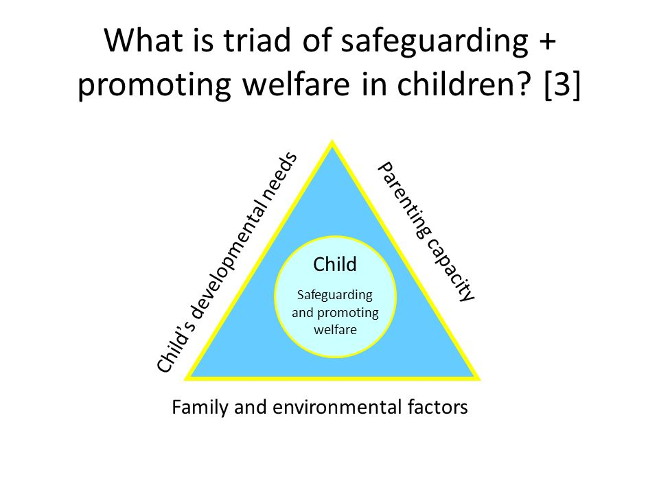 current legislation and guidelines for the safeguarding, protection and welfare of children.